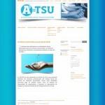 diseño de paginas web ong