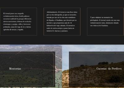 ElArenal monterias perdices diseno web Diseño paginas web