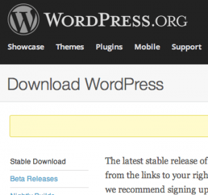 wordpress expertos