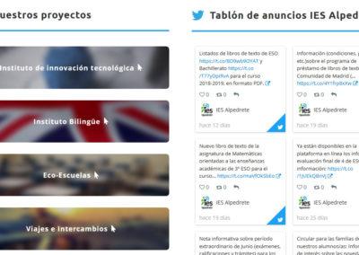creacion web instituto bilingue Diseño paginas web