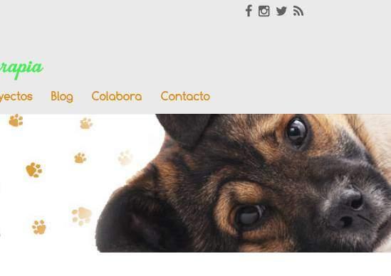 Diseño de página web para asociación en Madrid