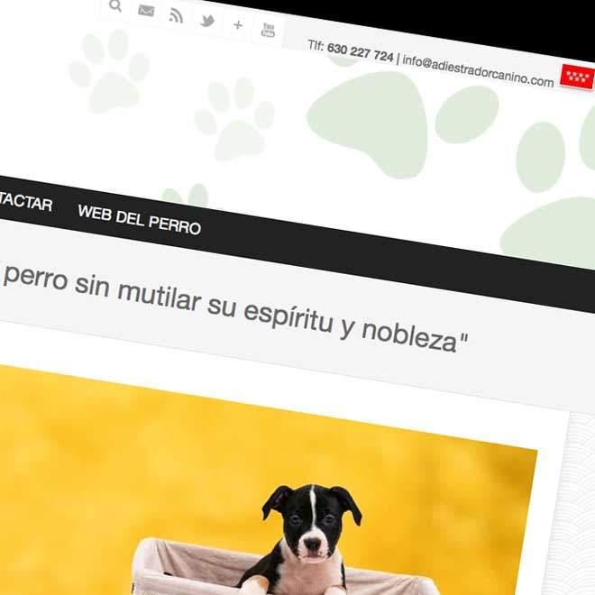 Diseño de página web para adiestrador canino
