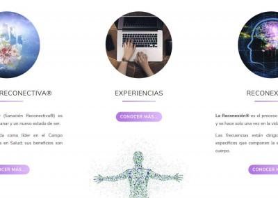 crear web reconexion sanacion