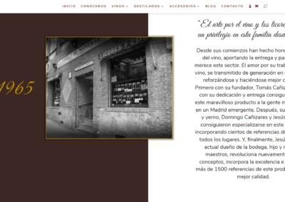 Disenadores Web Tienda Bodega