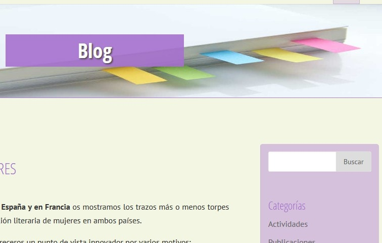 diseño web universitario Madrid