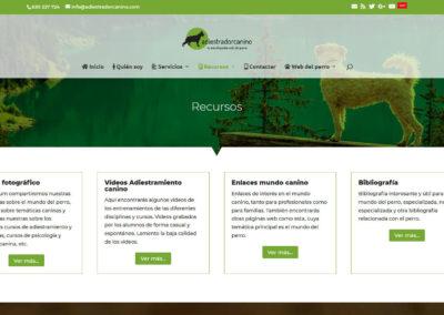 Diseño web adiestramiento