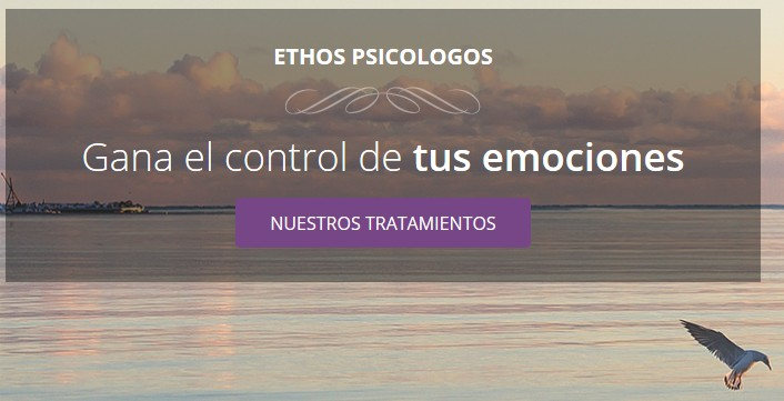 hacer una web psicologia
