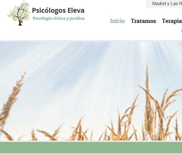Diseño de página web para psicólogos, web para centro de psicología en Madrid.