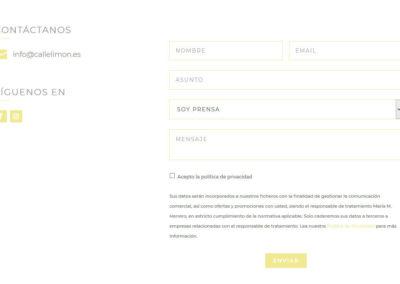 Diseno Web Tienda Online Madrid 00001