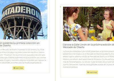 Diseno Web Tienda Online Madrid 00006