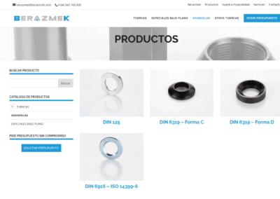 diseno pagina venta Arandelas Diseño paginas web
