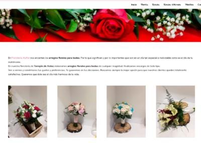 diseno web ramos novia madrid Diseño paginas web