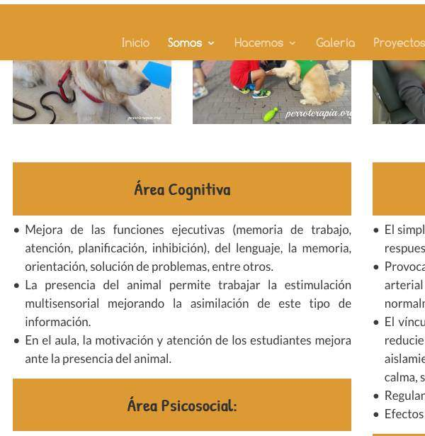 creacion web madrid