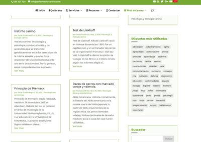 diseño web para cursos