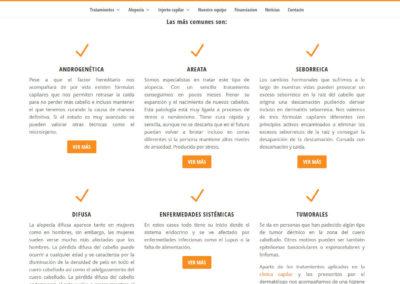 lauraagrelo pagina web capilar