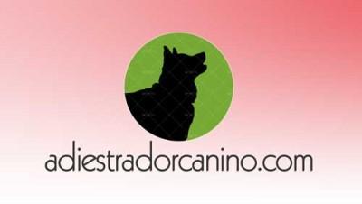 diseño logotipos perros