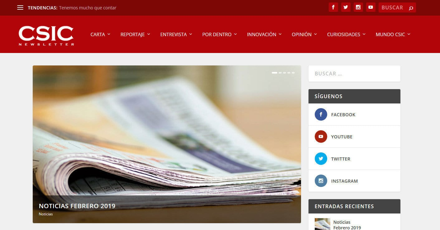pagina web csic Diseño paginas web