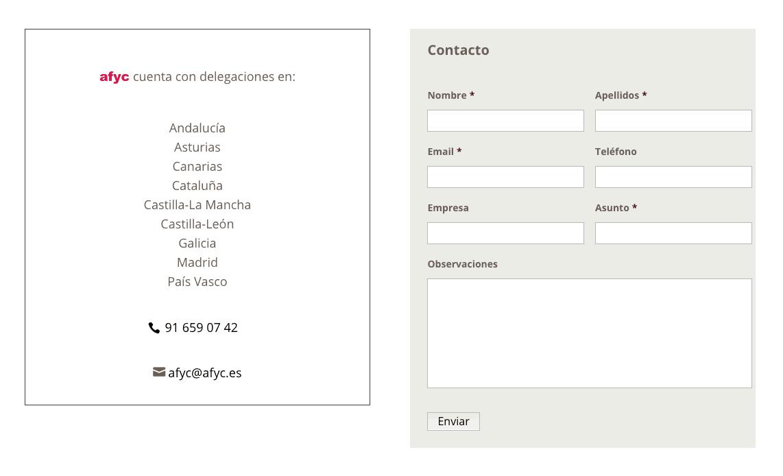 paginas web consultora