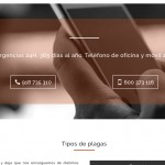 wordpress web madrid