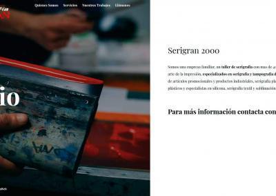 pagina Web taller serigrafia madrid Diseño paginas web