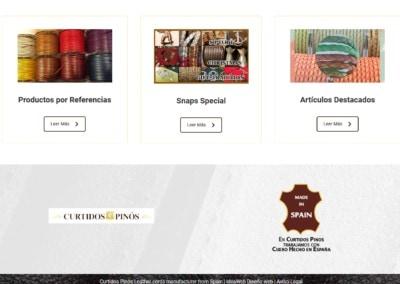 pagina taller curtidos web Diseño paginas web