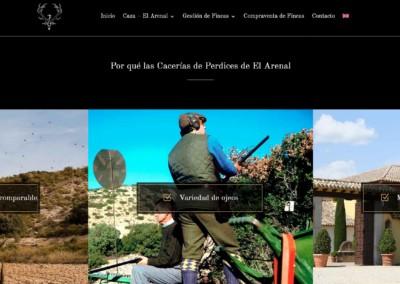 pagina web caza alojamiento Diseño paginas web