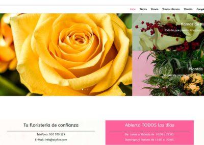 pagina web floristeria torrejon madrid Diseño paginas web