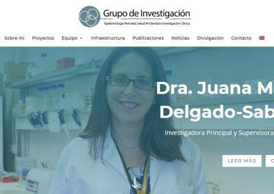 Pagina Web Investigacion