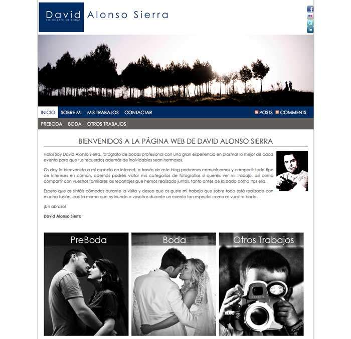 Diseño página web: David Alonso, Fotógrafo profesional de bodas
