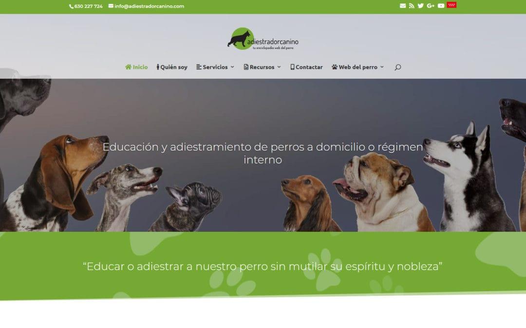 Nuevo diseño página web para empresa de Madrid formación, Adiestramiento y educación canina