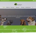 creacon paginas web