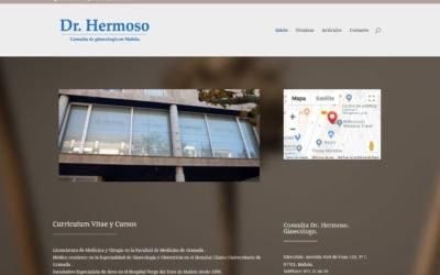 Diseño de pagina web para Clínica Ginecológica. Diseño web para ginecologo.