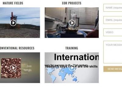Web Consultoria Petroleo Gas