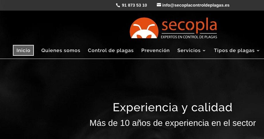 web empresa wordpress