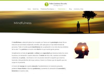 Web Psicologo Clinico Pagina Recacha