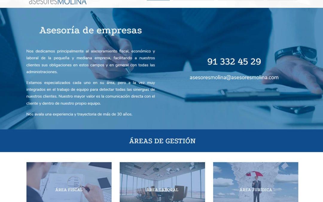 Diseño de página web para consultorías, asesorías y gestorías. Empresa en Madrid caso de diseño web.