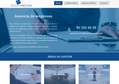 diseño web asesoria