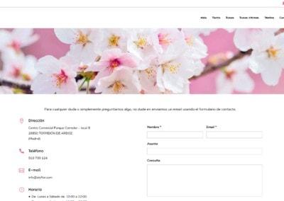 web contacto reparto floristeria Diseño paginas web