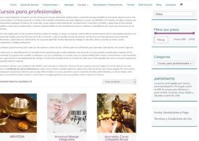 web cursos profesionales particulares Diseño paginas web