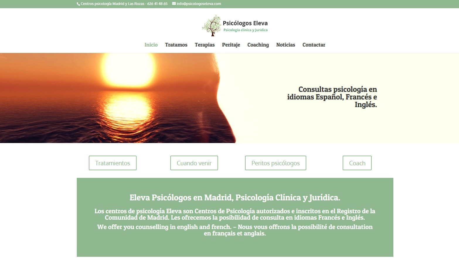 web pagina psicologos madrid Diseño paginas web