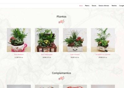 web plantas domicilio complementos madrid Diseño paginas web