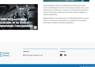 Web Profesionales Implantes Zigomaticos