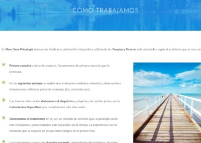 Web Psicologia Tecnicas Madrid